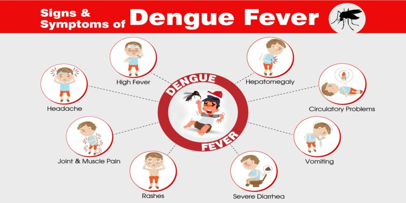 Causes, Symptoms And Prevention From DENGUE FEVER