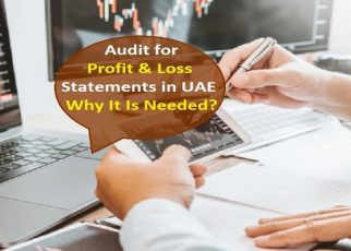 Why Businesses need Audit for Profit and Loss Statements in UAE | Businesses guest post website