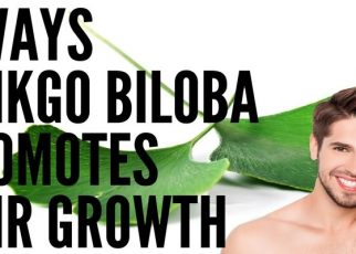 GINKGO BILOBA health guest post