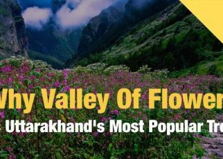 Valley Of Flowers In Uttarakhand | holiday places, travel tips