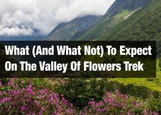 Valley of Flowers Trek: Flower Dreamland!