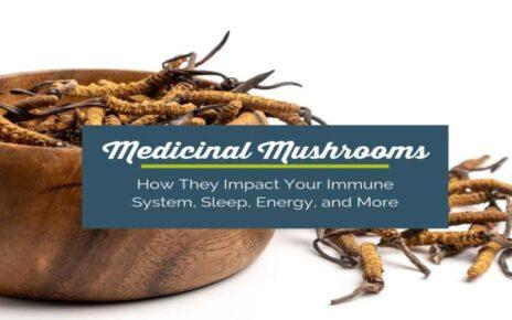 Mushroom Herbal Supplements