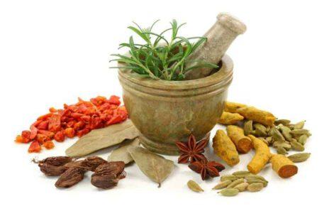 Benefits of Ayurvedic Treatment