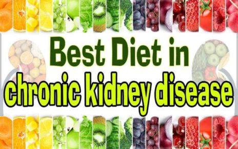 Best Diet for Kidney Patients